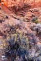 Desert Colors print