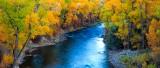 fall,trees,river,colorado,basalt
