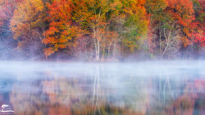 fog, smoke, mirrors, georgia, duck, ponds, morning, light, colors, fall
