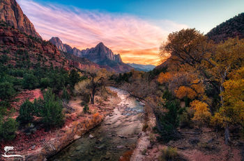 sunset, bridge, virgin, river, watchman, Zion, national, park, yellow, cottonwoods, leaves, fall