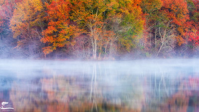 fog, smoke, mirrors, georgia, duck, ponds, morning, light, colors, fall