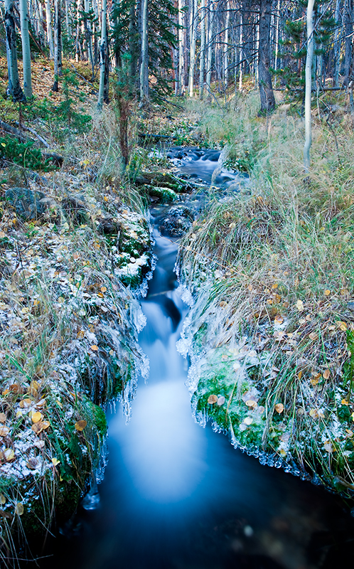ice, water, streams, fall, aspens, leaves, photo