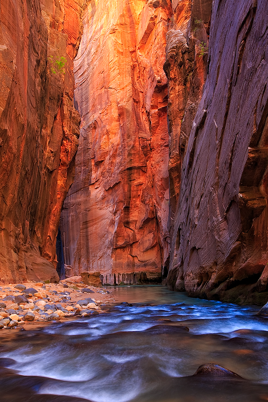 This is another image from Zion on the Virgin River.  At times, the river seemed to come out of a crack in the rocks, but...