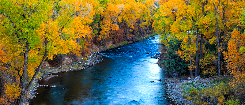 fall,trees,river,colorado,basalt,, photo