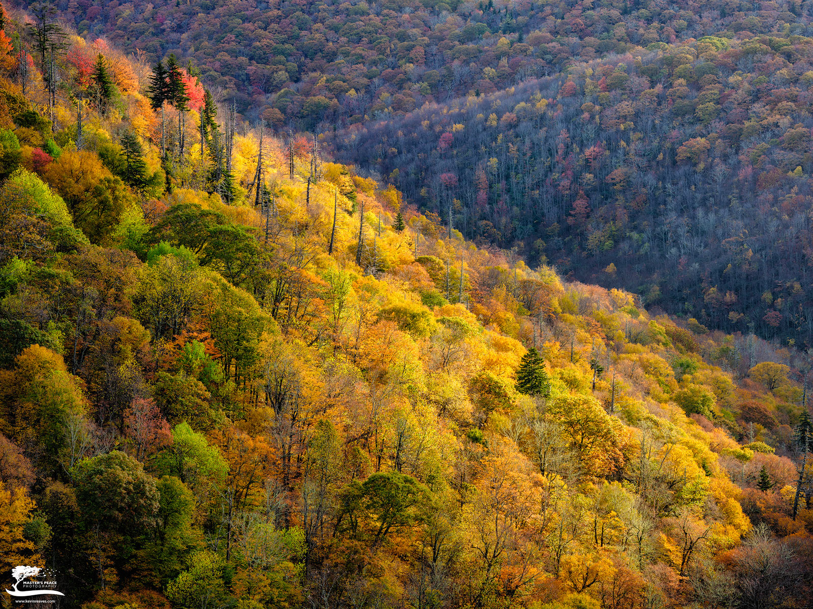 The sun burst through the clouds this late afternoon to illuminate a portion of the hillside covered in Fall colors.
