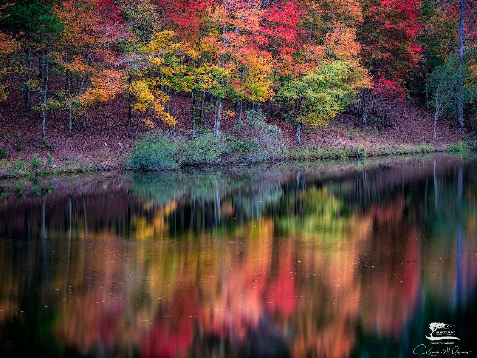 home, georgia, maples, lake, reflection, photo