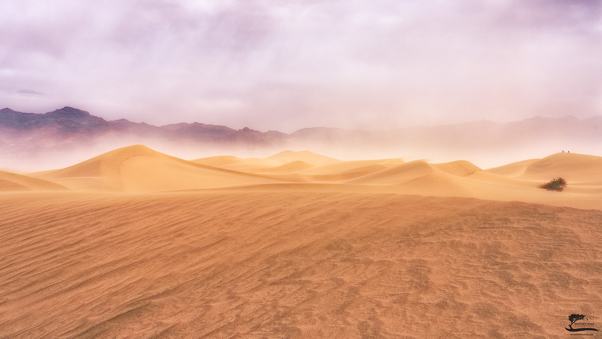 california, dunes, sand, storm, blowing, winds, afternoon, death, valley, national, park, photo